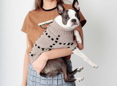 Dog Sweaters from Dusen Dusen in clothing