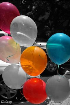 Color splash balloons, grey, black, white with one colored balloon for birthday photo!