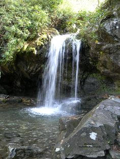 Grotto Falls in Great Smoky Mountain National Park,Tennessee