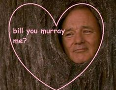 Discovered by cinnamon girl. Find images and videos about funny, lol and bill murray on We Heart It - the app to get lost in what you love. Funny Valentines Cards, Bad Valentines, Valentine Ideas, This Is Your Life, Lol, Pick Up Lines, Just For Laughs, The Funny, Stupid Funny