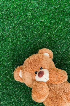 Photos and Comments Teddy Day, My Teddy Bear, Cute Teddy Bears, Cute Disney Wallpaper, Wallpaper Iphone Cute, Teddy Bear Pictures, Miniature Photography, Bear Wallpaper, Tatty Teddy