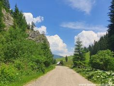 Prin Cheile Lucavei spre Herghelia Lucina   Taraba cu amintiri Drum, Country Roads, Drums
