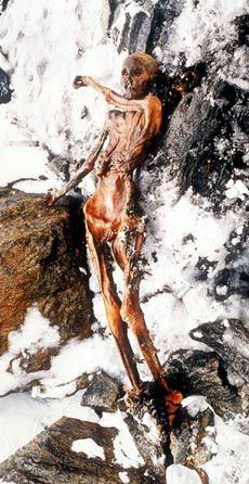 Ötzi The Iceman ~ Ötzi is a well-preserved natural mummy of a man who lived around 3,300 BCE. He was found in the Ötztal Alps on the Austrian–Italian border. A couple years ago, Ötzi's genome was sequenced using a pelvic bone sample weighing just 0.1 grams. Non-hominoid sequences (NON-HUMAN DNA) were detected with the mummified remains. If all this isn't controversial enough, Ötzi is CURSED. Several people connected to the discovery, recovery, and subsequent examination of Ötzi, have died.