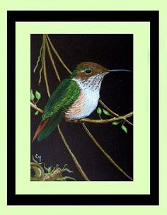 Art: Volcano Female Hummingbird (SOLD) by Artist Cyra R. Cancel
