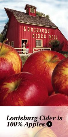 Louisburg Cider Mill, Ciderfest last weekend of Sept and first of Oct.  Also corn maze, etc.  Apple Cider Glazed Donuts!!!