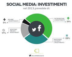 Social media: investimenti  - E-commerce in italia 2013 #ecommerce2013