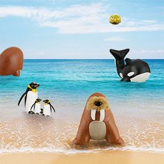 Hi! Let's get wet before we fly away. All the Animals with special skills are here!
