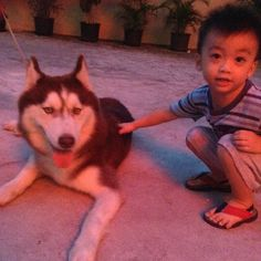 Ryan with husky so cute