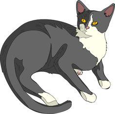 cat clip art   Gatto Cat 3 clip art - vector clip art online, royalty free & public ...