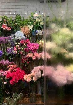 Nature Aesthetic, Flower Aesthetic, My Flower, Beautiful Flowers, Fresh Flowers, Wild Flowers, Urbane Fotografie, No Rain, Pretty Pictures