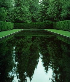 The dark surface of this pool almost becomes one with the surrounding hedge and trees, creating a dark, mysteriously enchanting outdoor room.