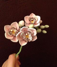 Photos from Anastasiya Bertova's post in *The... - Anastasiya Bertova