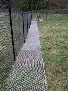 "the grass will grow through the ground matting and won't even be visible after awhile.no dog is going to get through feet wide, 9 gage fencing used as a ""ground mat"". Do keep dogs from digging under fence"