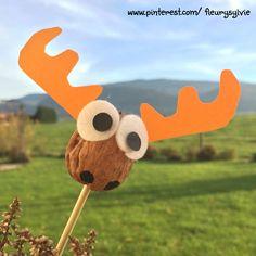 """Cerf """"coquille de noix"""", bricolage avec les enfants http://pinterest.com/fleurysylvie/mes-creas-pour-les-kids/"""