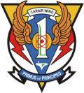US Navy Carrier Air Wings