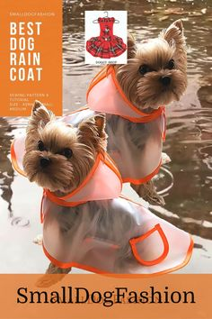 Dog Raincoat with Hood Sewing Pattern Transparent Waterproof Dog Coat with Hood for small dog size-Small Pattern & Sewing instructions. Small Dog Coats, Small Dogs, Small Dog Clothes Patterns, Dog Coat Pattern, Waterproof Dog Coats, Pekinese, Dog Raincoat, Dog Hoodie, Leather Dog Collars