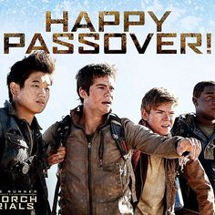 Happy Passover from your Glader fam. #SurviveTheScorch
