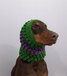 Large Dog Snood / Scarf by OneHookTwoHook on Etsy, $14.00.  Franklin would look so handsome in this.