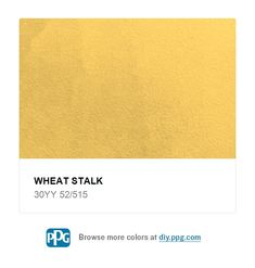 Explore paint color Wheat Stalk by PPG Timeless Paint, available at The Home Depot.This brilliant yellow is used appropriately on an accent wall.  White trim is perfect for this space. Mexican Colors, Background Ideas, Glow Sticks, White Trim, Paint Colors, Explore, Space, Yellow, Wall