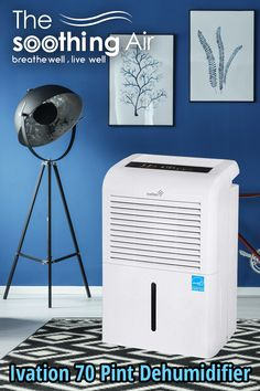Best 70 pint dehumidifier, 70 pint dehumidifier, best 70 pint dehumidifier 2018, best 70 pint dehumidifier 2019, best dehumidifier 2018, best dehumidifier 2019, Ivation 70 Pint Dehumidifier Crawl Space Dehumidifier, Dehumidifiers, Home Appliances, House Appliances, Kitchen Appliances, Appliances
