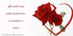 Boyfriend Birthday, Happy Birthday, Activities, Rose, Flowers, 8 Martie, Happy, Range, Happy Aniversary