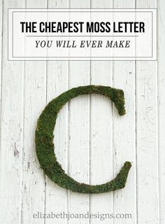 Here's an easy DIY project for how to make inexpensive moss letters. Great to hang on the wall, set on a shelf, nursery or even a wedding. An elegant look for cheap!