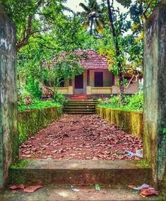 Kerala Architecture, House Architecture Styles, Kerala Travel, Kerala Tourism, Village House Design, Village Houses, Dslr Background Images, Photo Backgrounds, Kerala Traditional House