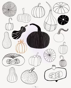 Craftside: Fall Inspiration: 20 Ways to Draw a Squash from the book 20 Ways to Draw a Strawberry by Zoe Ingram
