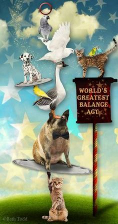 Balance Act © Beth Todd - All Rights Reserved Created with Holliewood Studio's 'World's Greatest Pet' @ MischiefCircus.com. A digital image kit for your art, collage, mixed media art and scrapbooking. #photomanipulation #digital #art #scrapbook #collage #artjournaling #atc