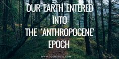 Officially, we are living in the geological epoch called the Holocene, but there is a movement to change the name of our current epoch to the Anthropocene, due to the...