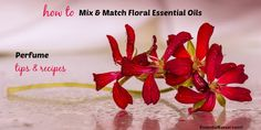 Why and when to use floral essential oils in a signature perfume? What does such a fragrance represent? Find tips and perfume recipes in here too.
