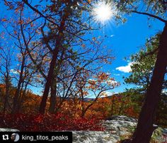 "#Repost @king_titos_peaks with @repostapp.  "" Happiness is not real unless shared""  #mountainscape #landscape_lovers #rei1440project #OptOutside #leafporn #sunnyday #sunrays #sunraycatcher #colorsofthefall #choosemountains #mohonkpreserve  #highpeterskilltrail #hikinglife"