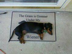 bahaha.... and I have this door mat :)