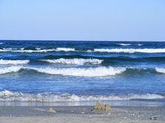 Calatoriile Mariei: O primăvară cu peripeţii de mucegai, la Marea Neag...