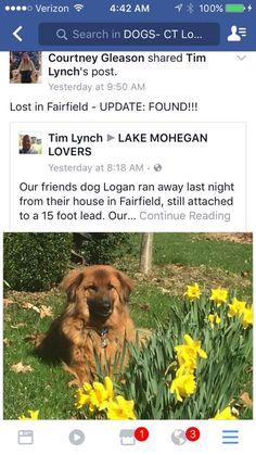 Found! Fairfield