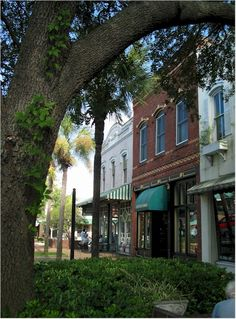 Fernandina Beach, Florida places-i-ve-been-or-would-like-to-see-d Visit Florida, Old Florida, Florida Vacation, Florida Travel, Florida Beaches, Fernandina Beach Florida, Micanopy Florida, Amelia Island Florida, Top Vacation Destinations