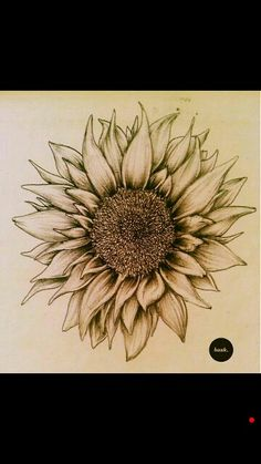 Gorgeous sunflower, great idea for a tattoo
