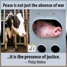 Lets all stand for justice for all creatures, not just humans!