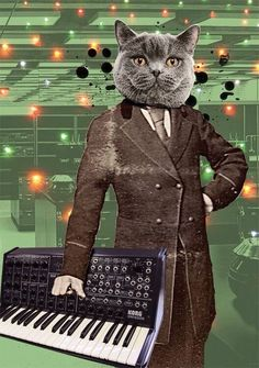 cats synthesizers space - Google Search