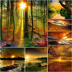 cabschau - Page 6 Love Collage, Color Collage, Beautiful Collage, Beautiful Images, Voici Venu Le Temps, Autumn Scenes, Nature Images, Color Of Life, Amazing Nature
