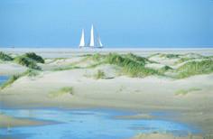 De Horspolders, zuidelijkste puntje van Texel, is genieten van rust en heel veel ruimte
