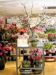 【微甜生活】我要开一家花店…… - 如何开花店 - 中国花卉论坛。花卉行业资讯大全-鲜花产地价格-花卉市场-花卉协会-花店花艺-婚庆展会-插花培训-花艺比赛 - Powered by Discuz! Flower Shop Design, Flower Designs, Floral Design, Flower Market, Flower Shops, Cut Flowers, Flower Shop Interiors, Garden Shop, Shop Fronts