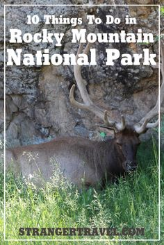 Things To Do In Estes Park Colorado Stranger Co USA - 10 things to see in rocky mountain national park