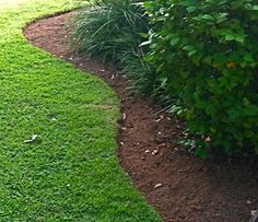 "Natural Landscape Edging-great idea to use a hose as the ""guide"" if it will be curved"