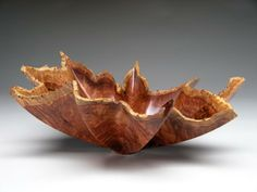 Shell Series  Redwood Lace Burl Gary Stevens