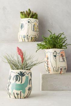 I must get these - Wild Alpaca Pot Anthropology