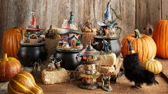 Snow Village Halloween - Toads & Frogs Witchcraft Haunt | Department 56 Corner