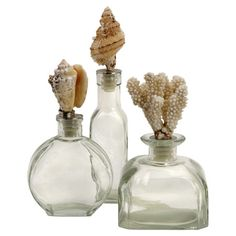 Set of three glass bottles with decorative shell stoppers. Product: Small, medium and large bottle  Construction Material:...