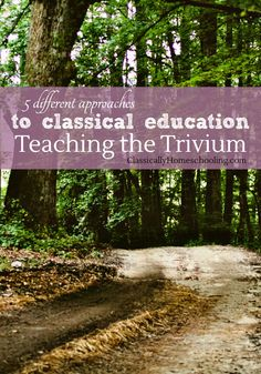 Teaching the Trivium: Christian Homeschooling in a Classical Style by Harvey and Laurie Bluedorn is yet another approach to classical education. Harvey and Laurie Bluedorn focus on the Biblical aspects of the Classical Christian Homeschool.