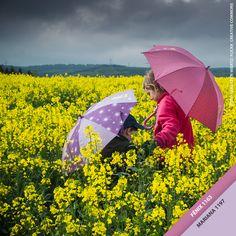 Os dias de chuva ficam mais alegres com um lindo guarda-chuva colorido! Qual é a cor do seu guarda-chuva? #Chuva #Cores